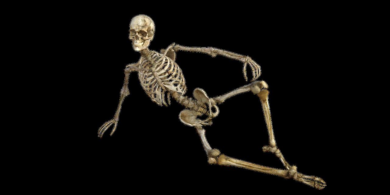 skeleton-1561177_1280