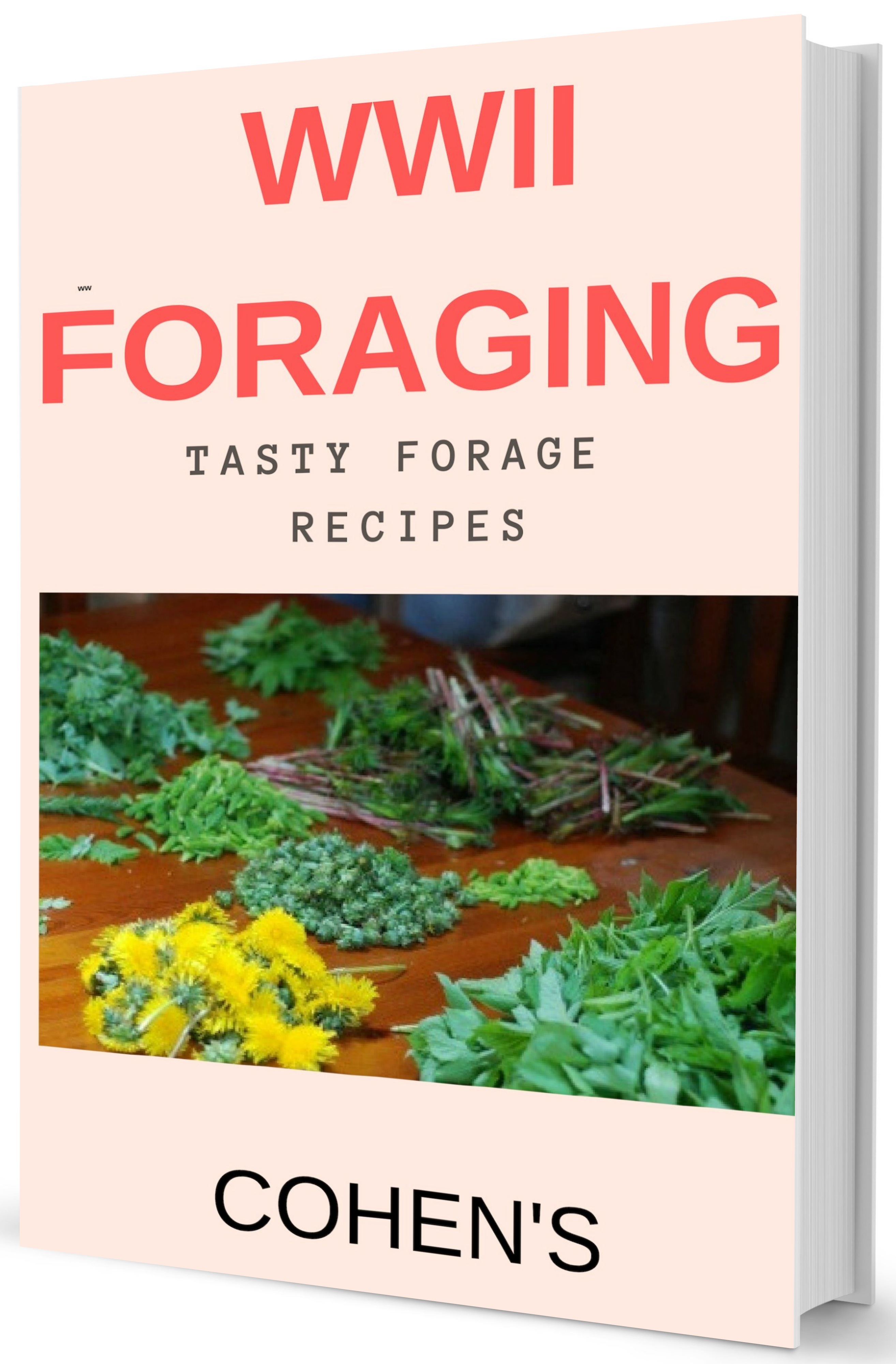 WWII foraging cook book cover mock up